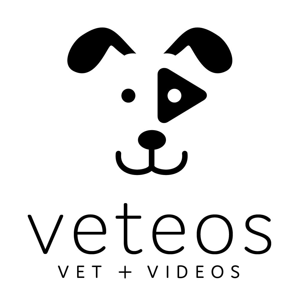 Veteos Veterinary Client Education Videos